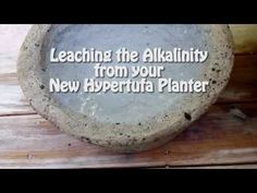 Leaching the alkalinity from a new hypertufa planter. Leaching a newly created hypertufa planter is the process of removing or leaching out s. Diy Concrete Planters, Cement Garden, Cement Art, Concrete Cement, Concrete Crafts, Concrete Projects, Outdoor Planters, Diy Planters, Garden Planters