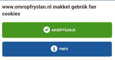 omropfryslan.nl Cookies, Crack Crackers, Biscuits, Cookie Recipes, Cookie, Biscuit