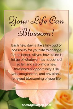 Think of each new day as a new bud of possibility for you. How can you encourage yourself to blossom today and have a fulfilling experience? <3