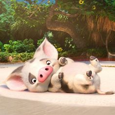 Meet Pua, Moana's loyal pet pig and currently our favorite character. Meet the rest of the characters in Moana by following the link in our bio.