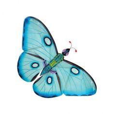 Papillon Miya bleu