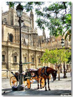 """SEVILHA: """"Calesa""""  A 'calesa' é um veículo tipicamente espanhol destinado ao transporte público. Tem duas grandes rodas e lugares para dois ocupantes."""