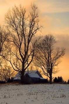 Winter Sunset In The Countryside