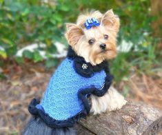 LADY LARUE CAPELET Dog Knitted Poncho/Wrap  by mysavannahcottage