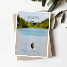 """""""You're a great catch!🎣 \n\n#birthdaycards #cards #cardsforhim #fishingcards #fishing #stationery #stationerylove #greetingcards #greetingcardshop #smallbusiness #showyourwork #shoplocal #etsyseller #etsy"""" Selling Handmade Items, Etsy Handmade, Greeting Card Shops, Boutique Shop, Etsy Seller, Invitations, Etsy Shop, Save The Date Invitations, Shower Invitation"""