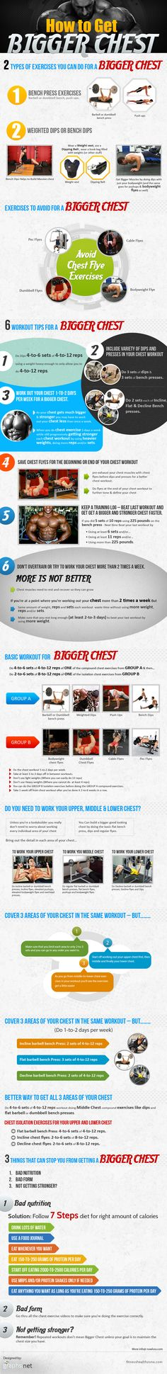 Growing Pectoral Muscles: Big and well shaped chest is considered a key virility trait and further it is highly valued by most women. This guide addresses the do's and dont's for building bigger chest muscles. Fitness Facts, Fitness Tips, Fitness Motivation, Health Fitness, Mens Fitness, Body Fitness, Fitness Quotes, Muscle Training, Weight Training