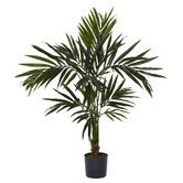 Found it at Wayfair - Kentia Silk Tree