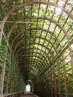 Cool covered walkway