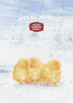 Calgary Farmers' Market: Chicks | Ads of the World™