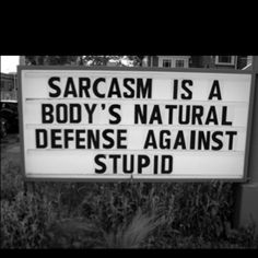Is sarcasm a sin? I sure hope not.