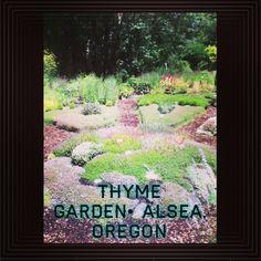 Oregon Flower, Flower Farm, Farms, Beautiful Homes, Usa, Garden, Flowers, Travel, House Of Beauty