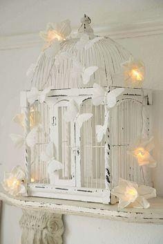 White butterflies......