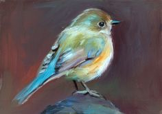 Red-Flanked Bluetail  Open Edition Print of от shaunafinnart