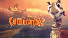 just a funny little video about the dangers of being a llama crossing the road. Caminandes: Llama Drama - Short Movie