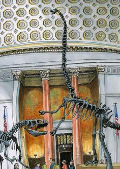 Tommy Kane's Art Blog: Natural History
