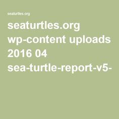 California Driftnet Fishery - The True Costs of a 20th Century Fishery in the 21st Century /seaturtles.org wp-content uploads 2016 04 sea-turtle-report-v5-web.pdf