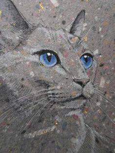 Gris ojos azul hermoso
