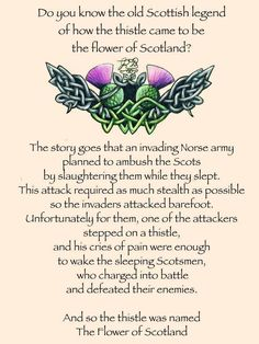 The Legend of the Thistle