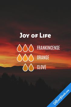 joy of life diffuser blend