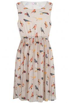 The Beige Robin Bird Print Dress - Retro Clothing