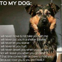 To my dog <3