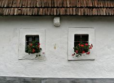 windows :)  old hungarian house