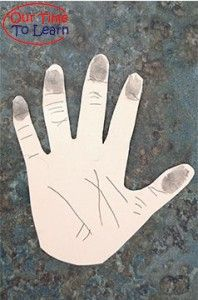 Many things to learn with this activity about skin! From the Our Time to Learn Blog - human body science for preschool, kindergarten, preschool, and home.