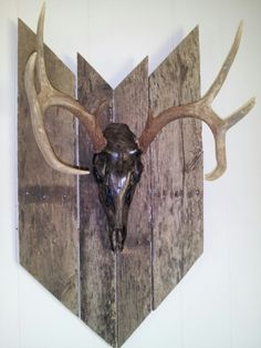 My deer i got last year, I mounted, stained the skull, and did everything else to it.