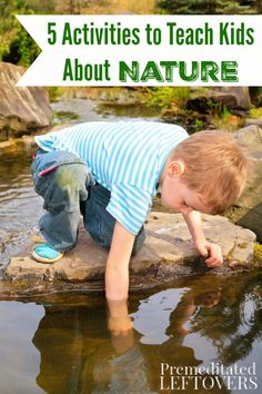 5 Activities to Teach Kids About Nature - fun ways to allow children to have fun exploring nature while learning about natural science.