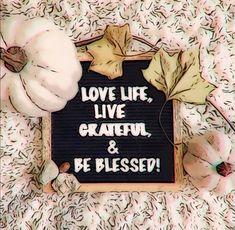 Grateful Quotes, Blessed, Cover, Books, Libros, Book, Book Illustrations, Gratitude Quotes, Libri