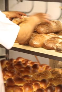 Bakers hard at work at Breads Bakery in Union Square, NYC BreadsBakery.com