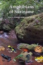 Amphibians of Suriname (Fauna of Suriname) Paul E. Ouboter, Rawien Jairam NCB Naturalis (Brill), 1ª edição, 2012 ISBN: 9789004210752  Tipo: Brochura  Número de páginas: 376