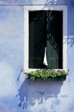 Blue Burano Window