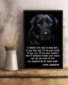 Words from your Labrador Check out my site for more!