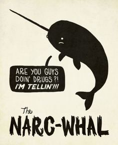I love narwhals