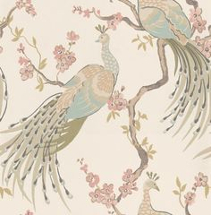 Indira  (W0019/01) - Clarke & Clarke Wallpapers - Beautiful peacocks with metallic highlights sitting in a pretty blossom tree. Showing in pastel pink and blue on a off white background - other colour ways available. Please request a sample. Paste-the-wall product.