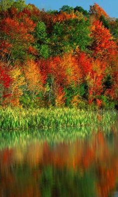 ✯ Autumn Colors Reflection