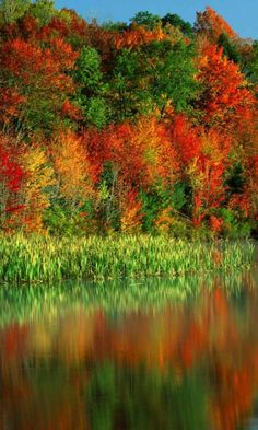 ✯ Autumn Colors Reflection