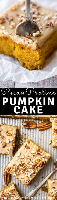 Pecan Praline Pumpkin Cake is my favorite new pumpkin recipe, and that's saying a lot. This cake has the perfect tender crumb, a lightly spiced pumpkin flavor, and an out of this world pecan praline frosting — get ready to drool… Fall Desserts, Just Desserts, Delicious Desserts, Dessert Recipes, Vegan Desserts, Yummy Food, Pumpkin Cake Recipes, Pumpkin Dessert, Fall Recipes
