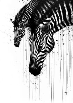 Zebras. Like the dripping