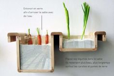 Conservation des légumes racine sans frigo