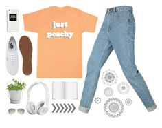 """""""Keeping it casual"""" by lover-of-pie ❤ liked on Polyvore featuring Just Peachy, Vans, Ray-Ban, Beats by Dr. Dre, Potting Shed Creations, WallPops, women's clothing, women's fashion, women and female"""