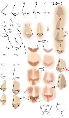 Drawing anime noses by moni158.deviantart.com on @deviantART - some really good drawing & shading one-page tutorials