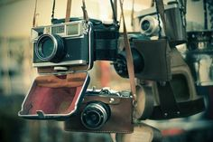 If only old cameras could talk.  I am in love with these old beauties!