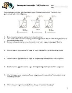 Gummy Bear Osmosis and Diffusion Worksheet | Scientific ...