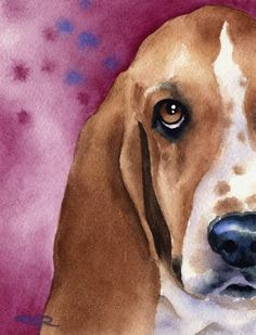 BASSET HOUND Dog Art Print Signed by Artist DJ Rogers.