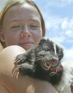 Image: Pet skunk (© Wilfredo Lee/AP)