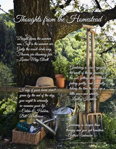 Thoughts from The Homestead Molly Green Magazine FREE Online!  - Summer 2015 - Page 106