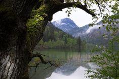 Update: Munich Day Trips - Nature Edition