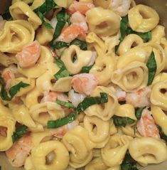 Tortellini and Basil Shrimp in a Lemon-White Wine Sauce - simple and totally delicious one-pot weeknight meal! andwhatiate.com